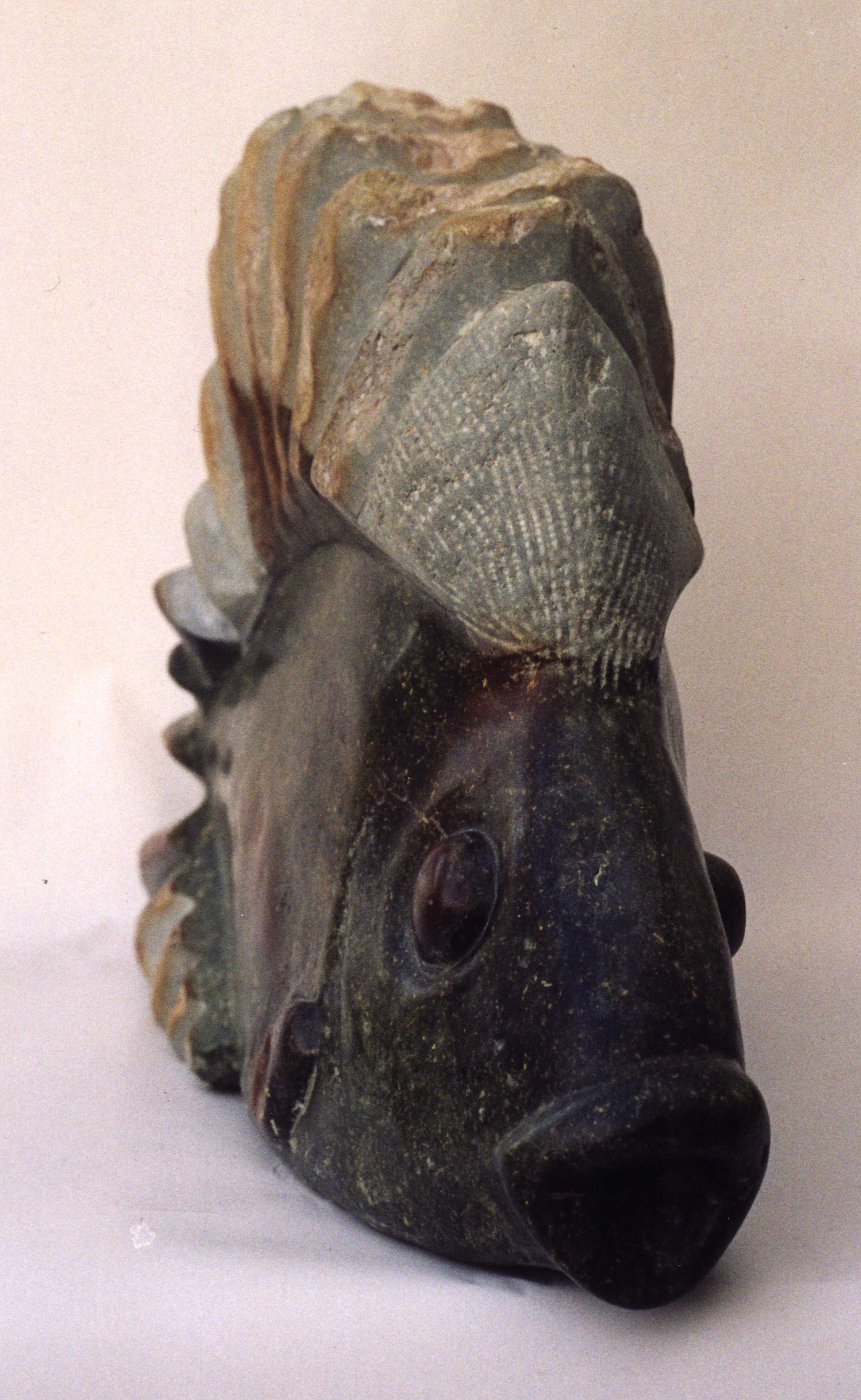 Igelfisch 1