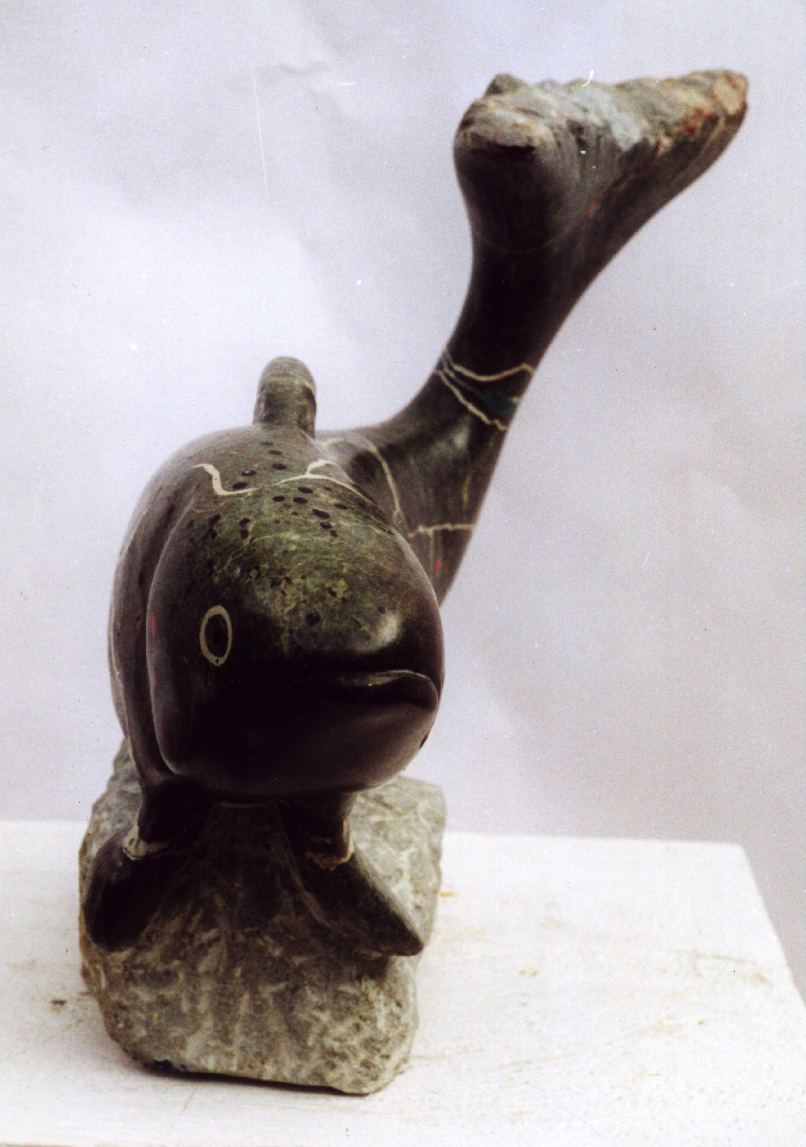 Marmorierte Forelle 2