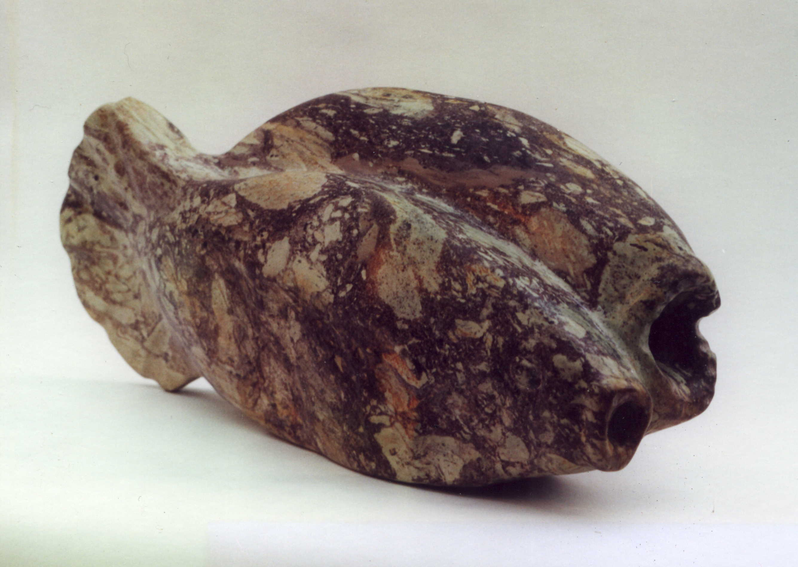Singende Fische 1